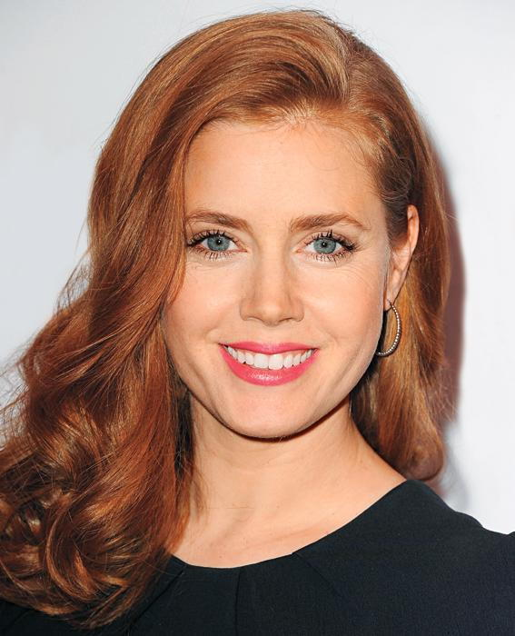 Amy Adams arrives at the American Film Institute Awards Luncheon