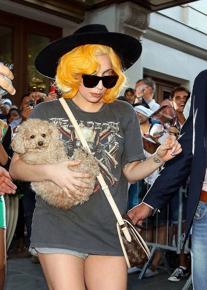 Gospa Gaga and Fozzi